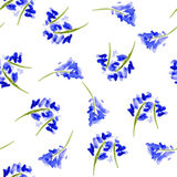 Sketch watercolor flowers in vintage style Stock Image