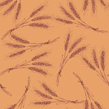 Sketch wheat bran in vintage style. Vector seamless pattern Royalty Free Stock Image