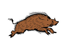 Sketch of wild boar running, hand drawn illustration Royalty Free Stock Photography