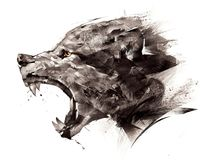 Free Sketch Wolf Wolf Sideways On A White Background Royalty Free Stock Photography - 114345957