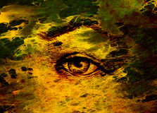 Sketch of woman eye with eyebrow, drawing on abstract background. Royalty Free Stock Photo