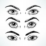Sketch women's eyes Stock Images