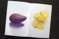 Sketchbook met avocado en iristekening wordt uitgespreid die Stock Foto's