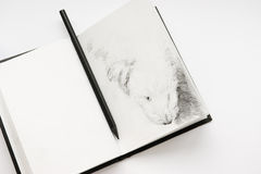 Sketchbook and a pencil. This is my old sketchbook. I own the copyright to the pencil drawing in it stock images