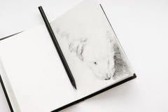 Sketchbook und ein Bleistift Stockbilder