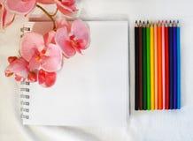 Sketchbook- und Farbbleistifte auf weißem Hintergrund stockbild