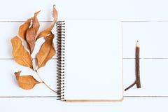 Sketchbooks con el lápiz en el fondo blanco, de madera, visión superior Imagen entonada, efecto de la película Foto de archivo libre de regalías