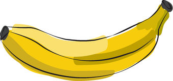Sketched Banana Stock Photography