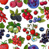 Sketched berries like blueberry, raspberry, gooseberry, current, plum seamless pattern Royalty Free Stock Photography