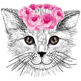 Sketched cat with green eyes and hair flowers Royalty Free Stock Image