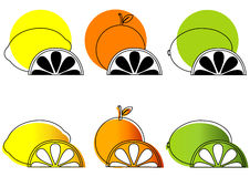Sketched Citrus Fruits Royalty Free Stock Photo