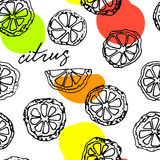 Sketched citrus fruits Royalty Free Stock Photos
