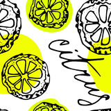 Sketched citrus fruits Royalty Free Stock Images