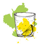 Sketched cocktail on splashed background. Vector illustration of Stock Photography