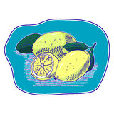 Sketched and colored lemons Stock Photography
