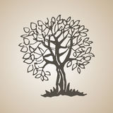 Sketched decorative tree of doodle stile. Hand drawn illustration Royalty Free Stock Photos