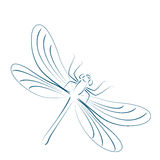 Sketched dragonfly. Stock Image