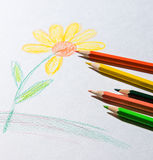 Sketched drawing of flowers Royalty Free Stock Photography