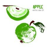 Sketched fruit illustration of apple. Stock Image