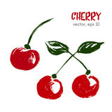 Sketched  fruit illustration of cherry. Stock Photos