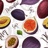 Sketched fruits background. Vector seamless pattern with figs and plum and passionfruit. Hand drawn illustration Stock Photos