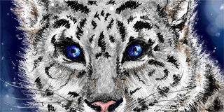 Little cute sketched snow leopard on navy blue background Stock Photography