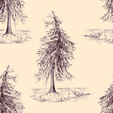 Sketched spruce pine tree sepia seamless pattern background Royalty Free Stock Images