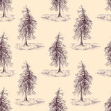Sketched spruce pine tree sepia seamless pattern background Royalty Free Stock Photo