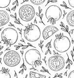Sketched tomatoes pattern Royalty Free Stock Photos