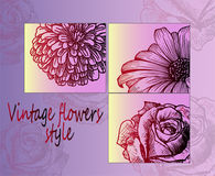 Sketches - beautiful detailed flowers, close-up. Bright poster Stock Photo