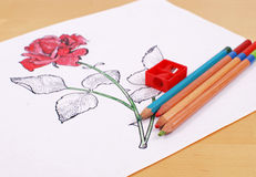Sketches of Beauty Royalty Free Stock Images