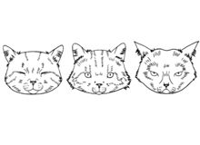 Sketches of cat heads in realistic style. Cats set, vector illustration, hand-drawn cute fluffy cats royalty free illustration
