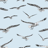 Sketches of the flying gulls. Vector pattern of the seagulls in flight Royalty Free Stock Image