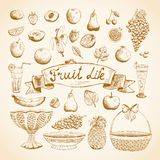 Sketches of juicy fresh fruits Royalty Free Stock Photos