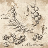 Sketches for menu of food Royalty Free Stock Images