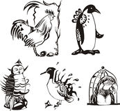 Sketches of miscellaneous birds Stock Photo