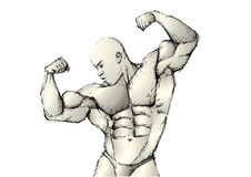 Sketching bodybuilder. Pencil sketching of the bodybuilder in the s royalty free illustration