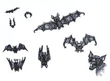 Sketchy bats. Sketchy collection of bat illustration in different position stock illustration