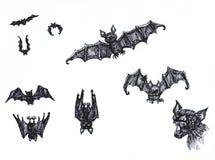Sketchy  bats Stock Photos