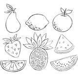 Sketchy Doodle Fruit Vector. Illustration including Pear, Lemon, Orange, Strawberry, Orange Wedge, Pineapple, and Watermelon Wedge Stock Photography