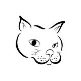 Sketchy face cat Royalty Free Stock Photo