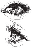 Sketchy female eyes Stock Images