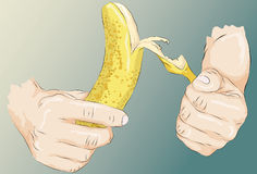 Sketchy illustrated hands peeling a banana. Roughly drawn stylized hands peeling a banana. Lines, main shape fill, highlights/shading for hands and banana are royalty free illustration