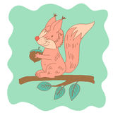Sketchy little pink squirrel on the branch of tree Stock Photos