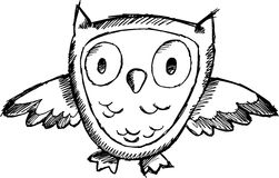 Sketchy owl Vector Illustration Stock Images