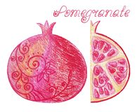 Sketchy pomegranate Stock Photo