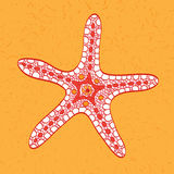 Sketchy starfish in cartoon style Stock Photo