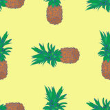 Sketchy style pineapple seamless pattern Royalty Free Stock Image