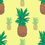 Sketchy style pineapple seamless pattern.  Royalty Free Stock Photos