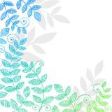 sketchy växt för anteckningsbok för klotterlövverkleaves stock illustrationer